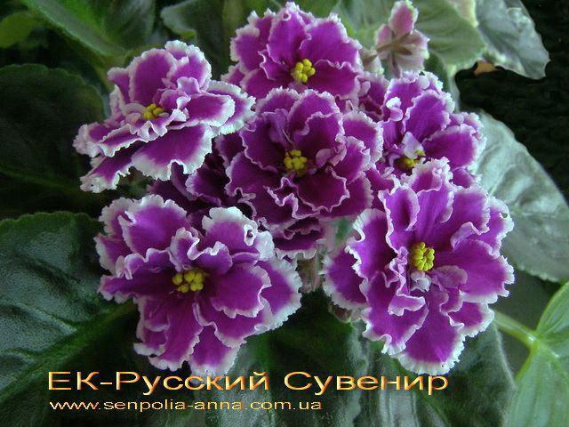 русский сувенир фиалка фото